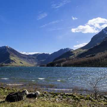 One night rail & road Lake District tour from Edinburgh